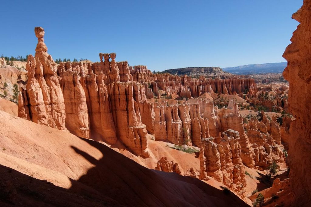 Bryce canyon's hoodoos