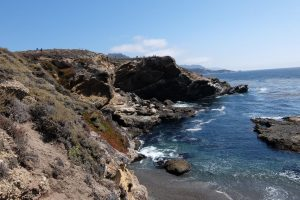 Andrew Molera state parco California spiaggia