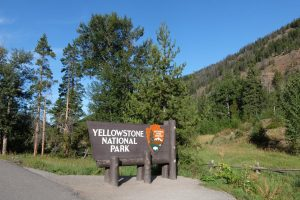 Yellowstone park entrance