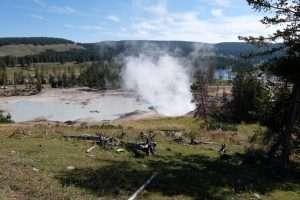 Geyser di fango a Yellowstone
