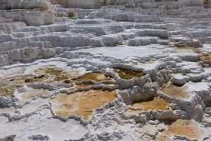 Yellowstone sorgenti calde bianche