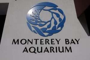 Monterey acquario California