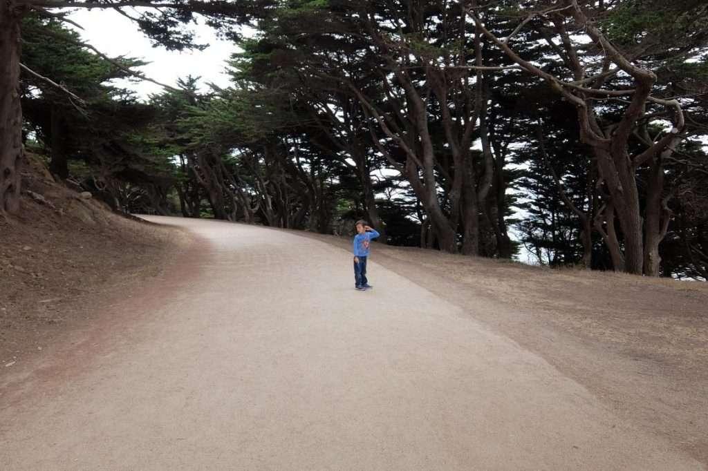 Presidio il parco a San Francisco