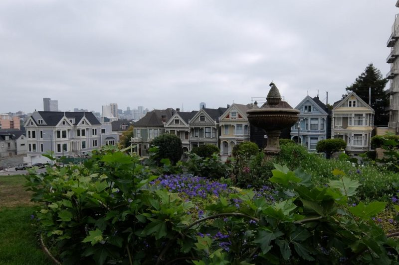 painted ladies city hall san francisco