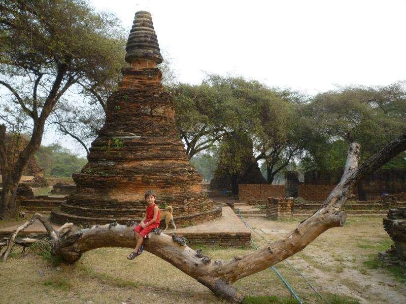 ayutthaya viharn phra mongkol bopit chedi di mattoni