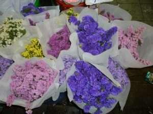 bangkok mercato fiori
