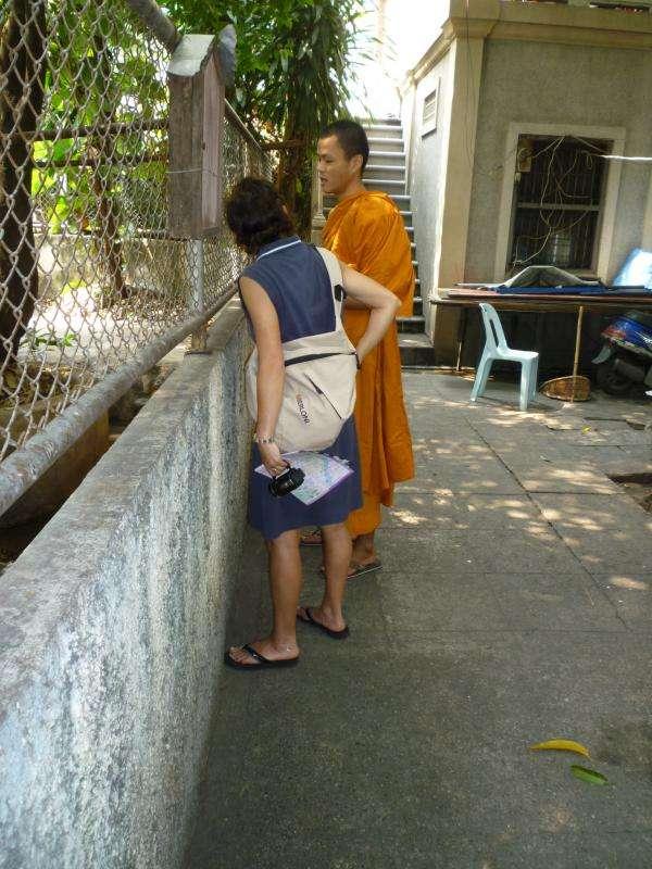 bangkok dialogo con il monaco
