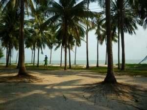 khao sam roi yot palme in spiaggia