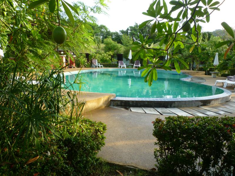 ko samui piscina resort