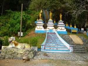scalinata al tempio della tigre di krabi