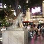 Shibuya cosa vedere cosa fare TOKYO