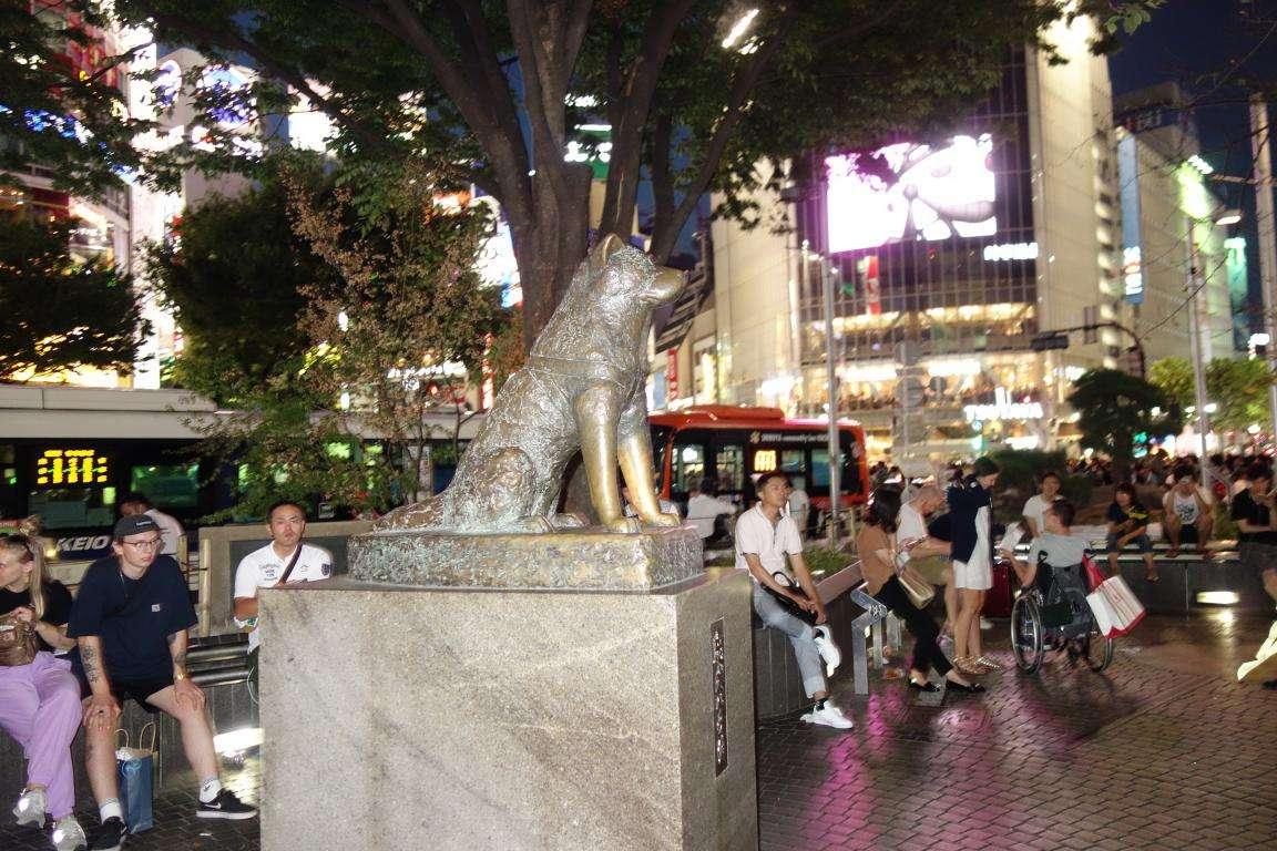 Shibuya il cane Hachiko