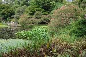 Giardini imperiali di Tokyo