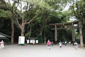 Torii santuario Meiji a Tokyo
