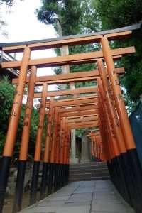 Torii a Ueno park Tokyo