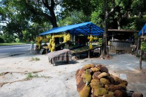 frutta tropicale per strada