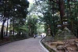 Nara viale di un tempio scintoista