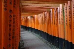 Torii del Fushimi inari tempio di Kyoto