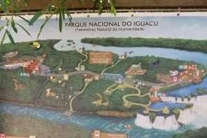 Piantina Iguazù