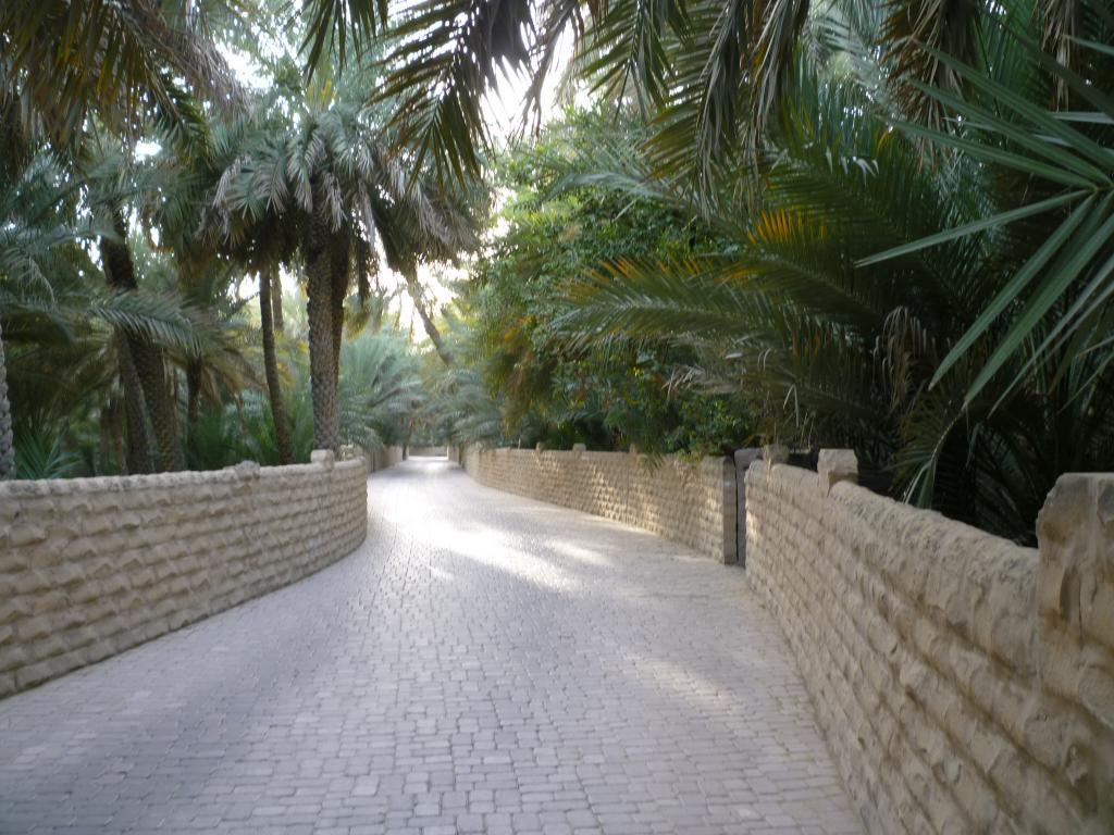 Oasi ad Al Ain
