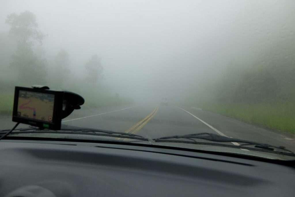 Nebbia nel parco nazionale