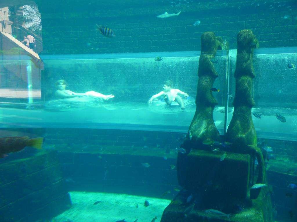 tunnel dell'aquaventure dell'atlantis