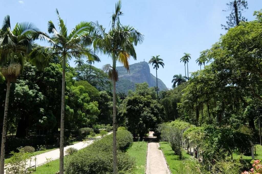 giardino botanico di Rio