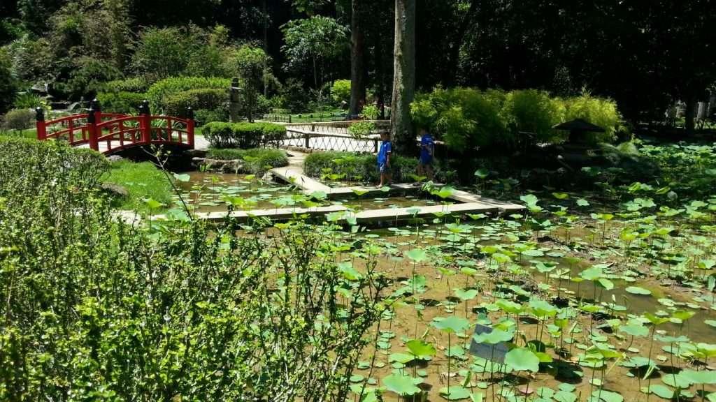 Giardino giapponese a Rio