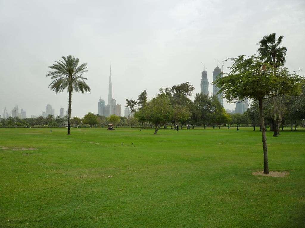 Skyline dal Safa Park