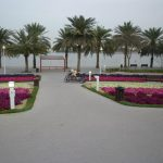 Children's city cosa vedere Creek Park Dubai