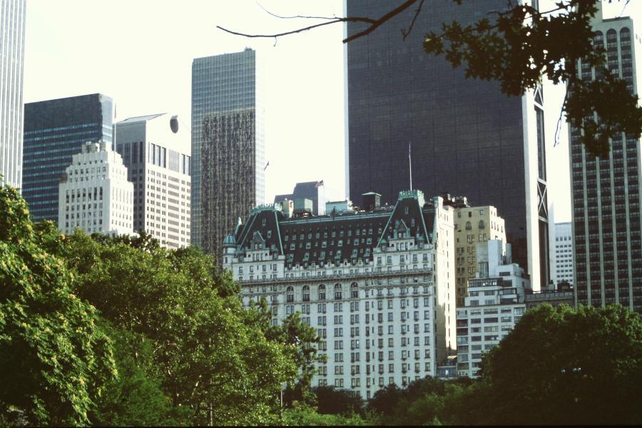 Central park vista sul Plaza Hotel