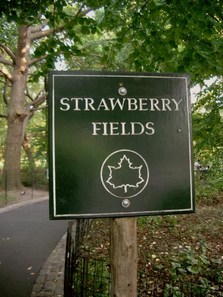 Strawberry fields a Central Park