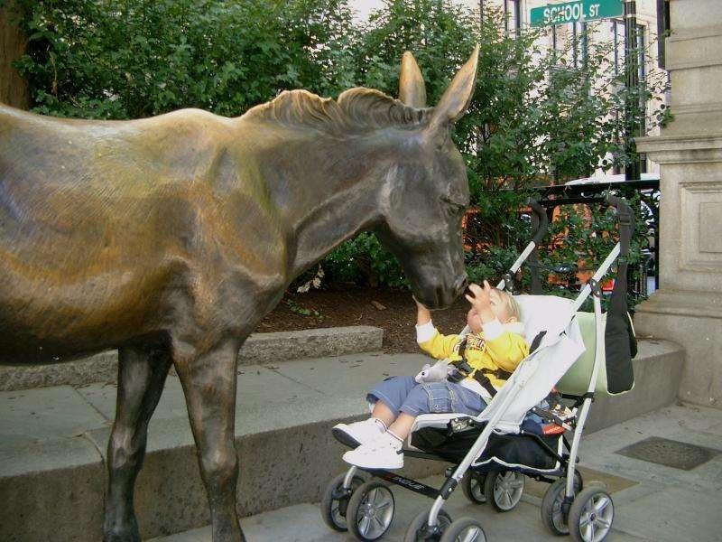 Mulo in bronzo davanti al vecchio municipio a Boston