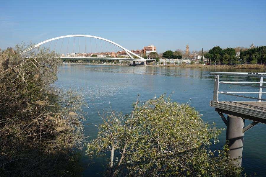 Puente Barqueta sul Guadalquivir