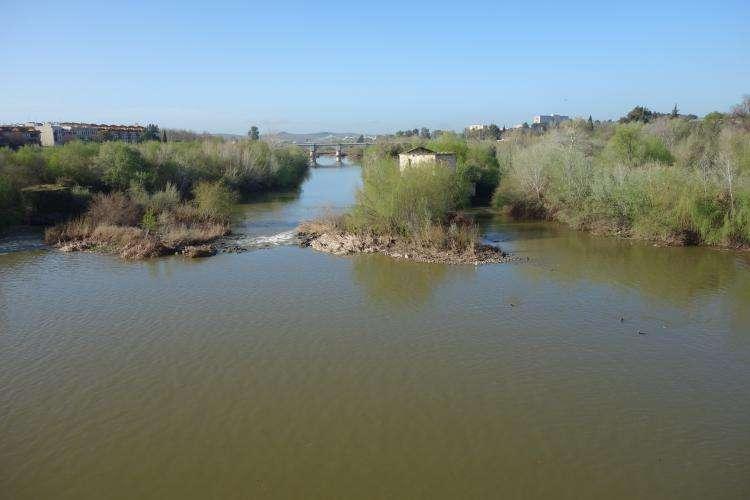 Guadalquivir a Cordova