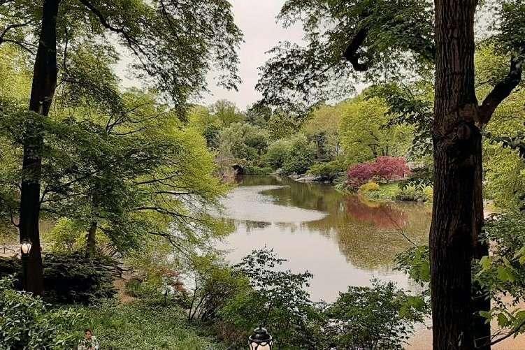 Central park New York sfumature autunnali