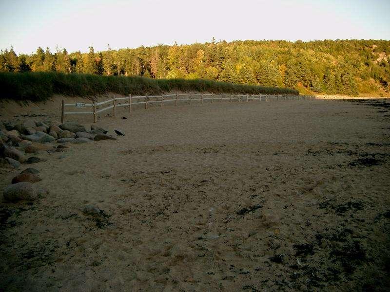 Acadia national park Sand Beach