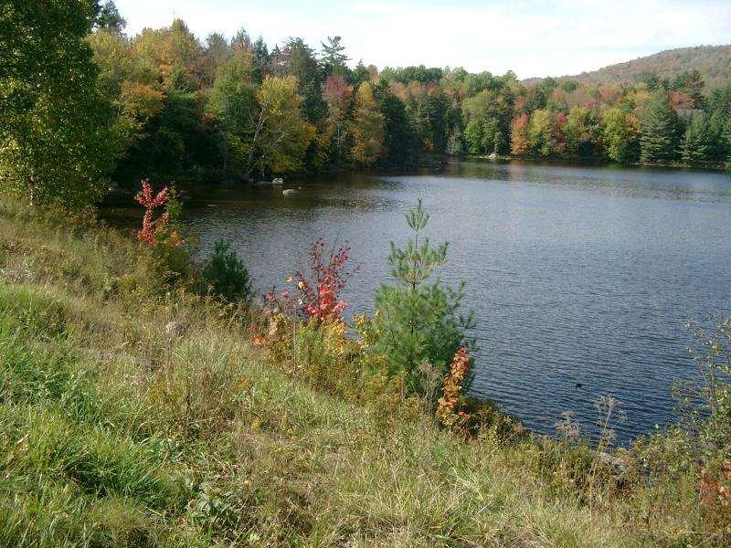 Colori negli Adirondack