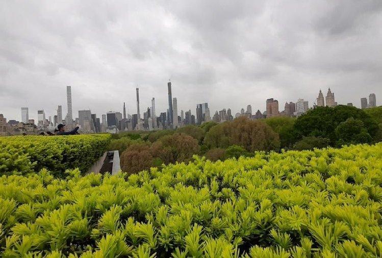 Central Park dal Met