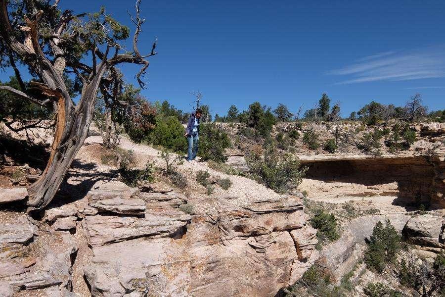 Grand Canyon punto di osservazione