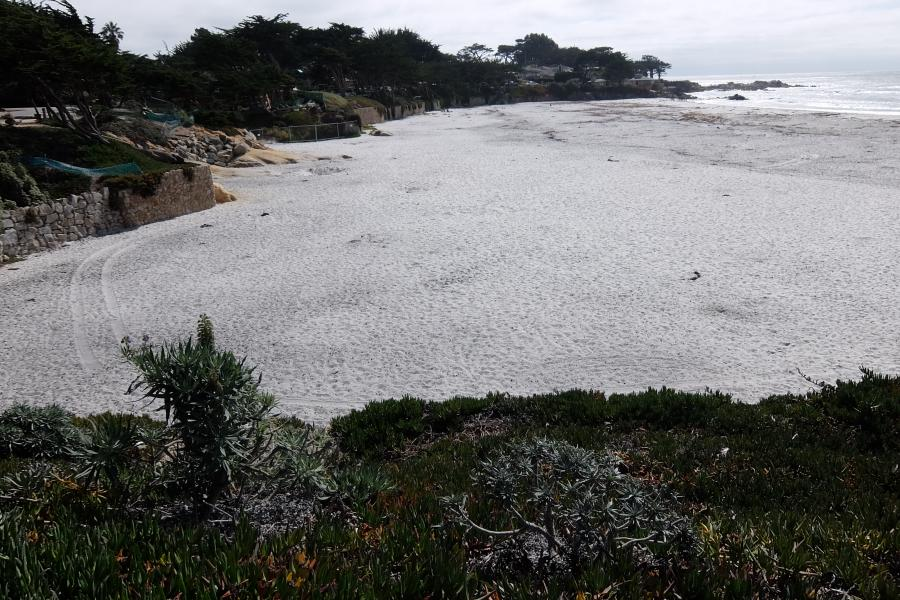 Carmel-by-the-Sea la spiaggia
