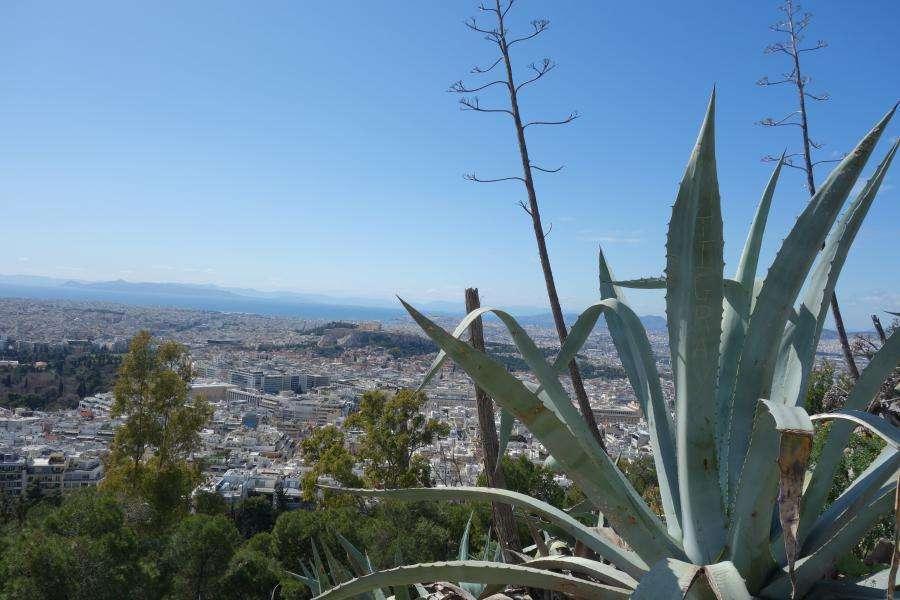 Vista dal Licabetto colle Atene