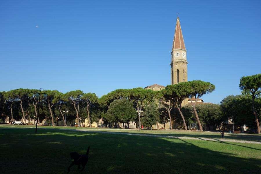 Arezzo campanile del duomo