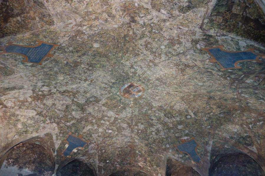 Sala delle Asse affresco di Leonardo