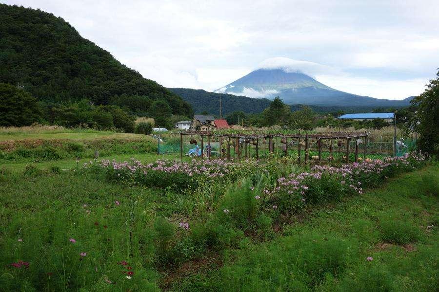 Monte Fuji dal villaggio Iyashi no Sato
