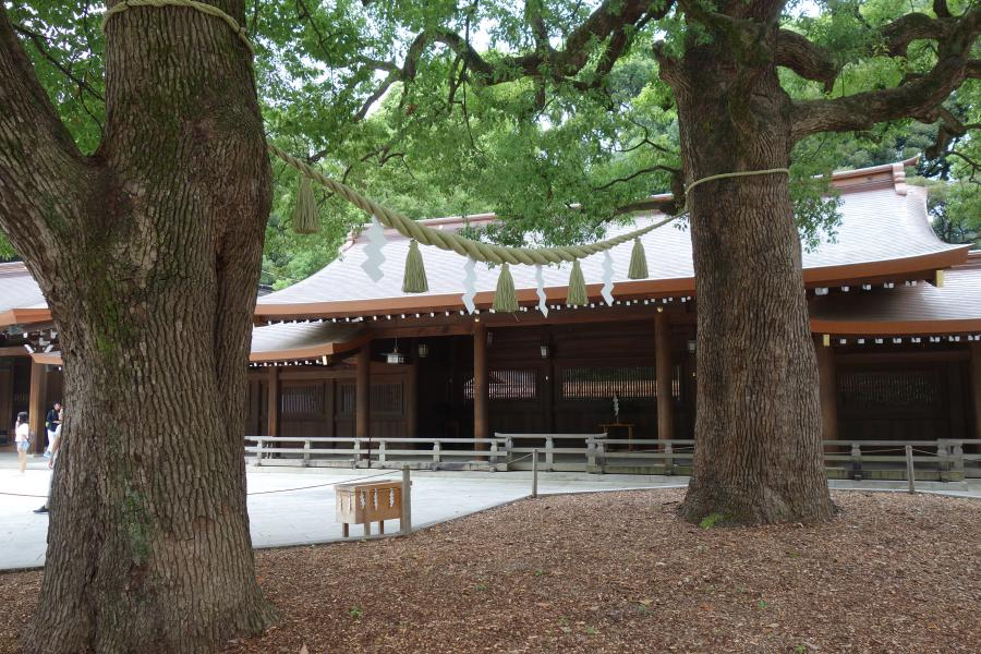 Shimenawa nel santuario shintoista
