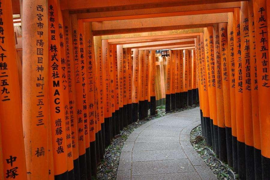 Torii dei santuaria shintoisti in Giappone