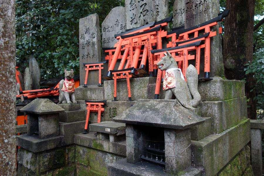 Kitsune nel santuario shintoista dedicato a Inari