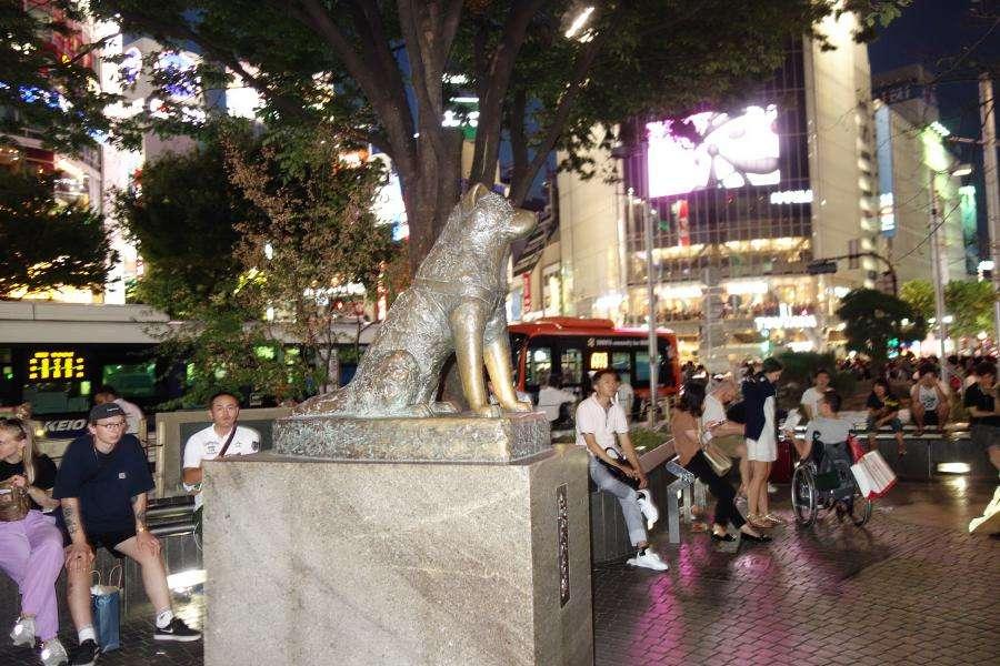 Hachiko davanti alla stazione di Shibuya