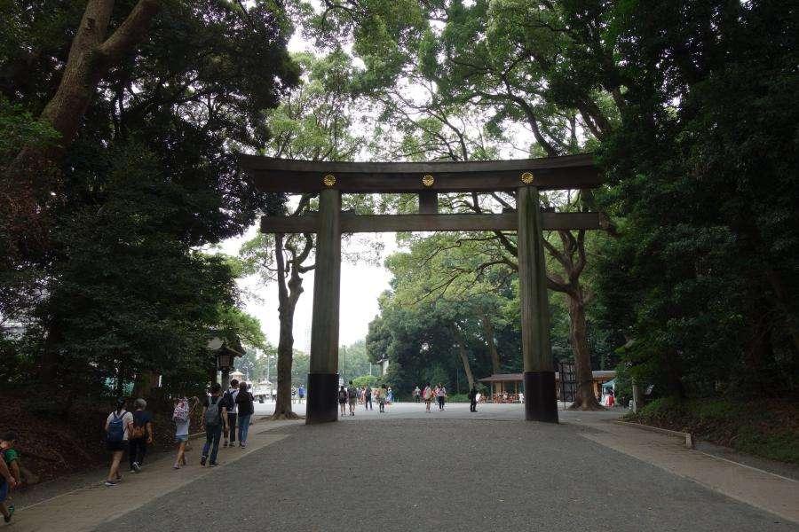 Torii del Meiji jingu a Tokyo
